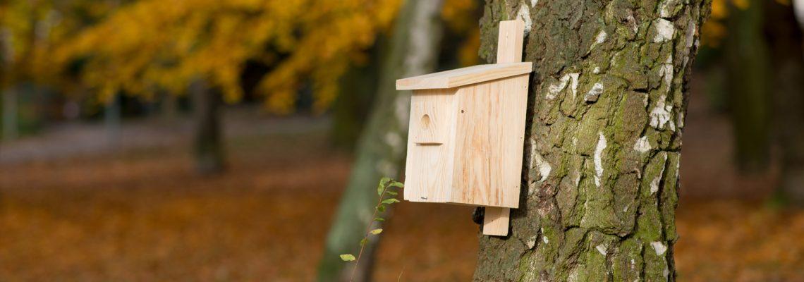 Budka lęgowa dla ptaków na działkę