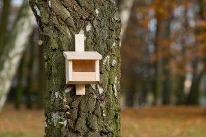 wieszanie domek dla ptaków, mała budka lęgowa półotwarta sklep