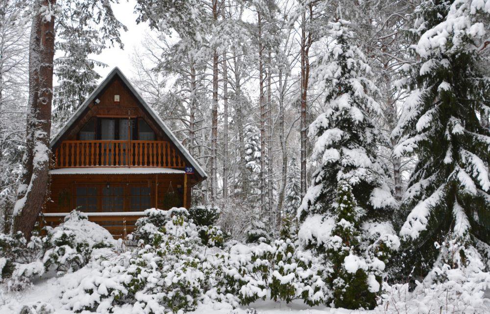 budka lęgowa dla ptaków wiszący domek dla ptaków zimą