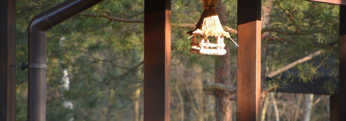 Karmnik dla ptaków edukacyjny