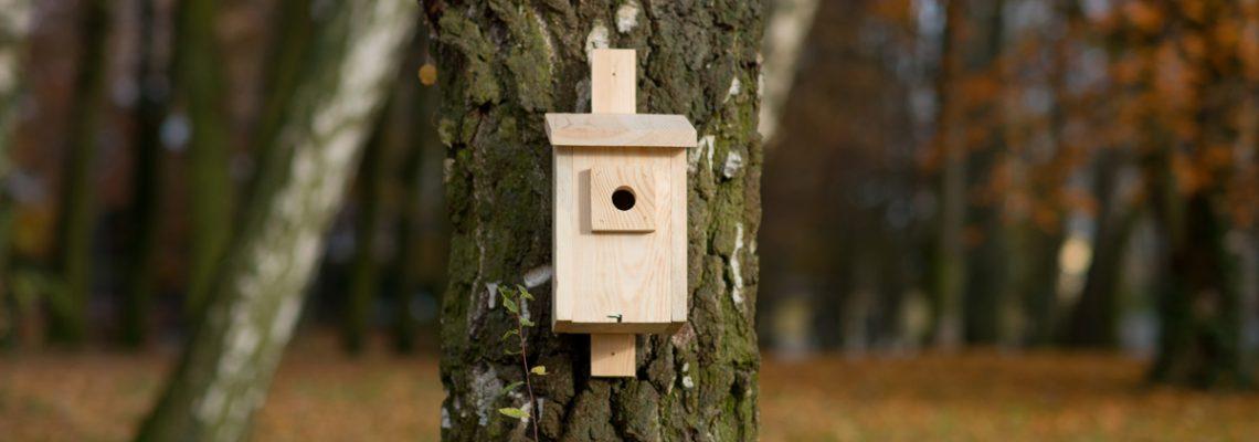 budka drewniana dla ptaków mocowana do drzewa