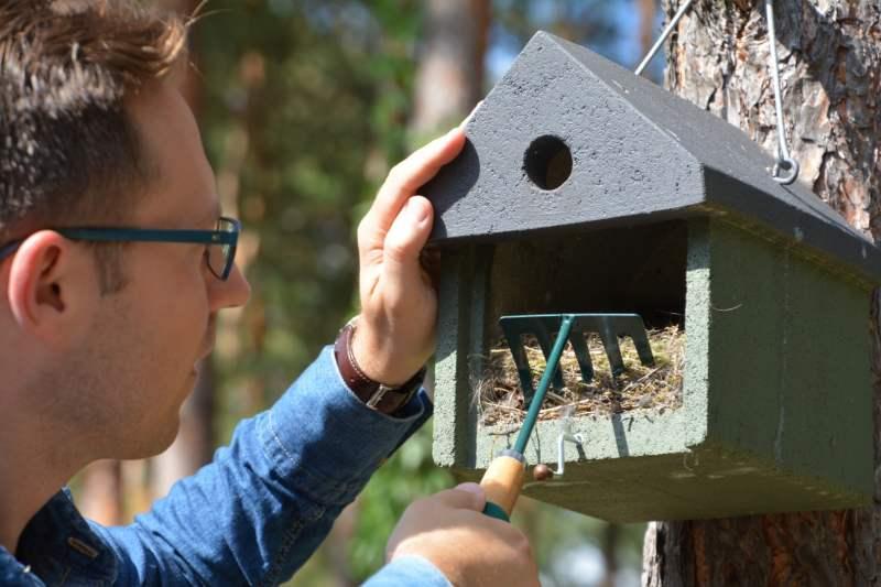 Czyszczenie budek dla ptaków