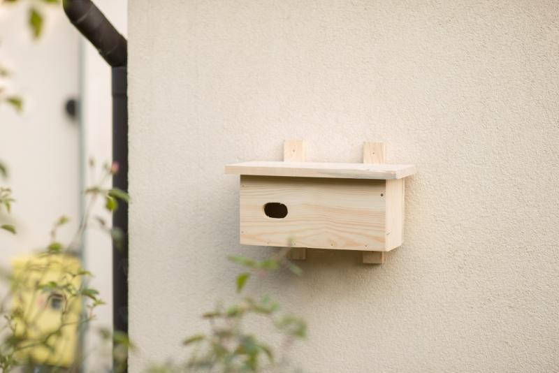 Budka dla jerzyka wykonana z drewna
