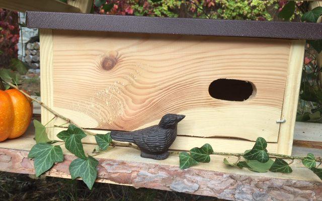 Budka lęgowa dla jerzyka