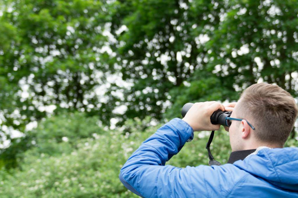 Ornitolog Szczecin obserwujący ptaki w mieście