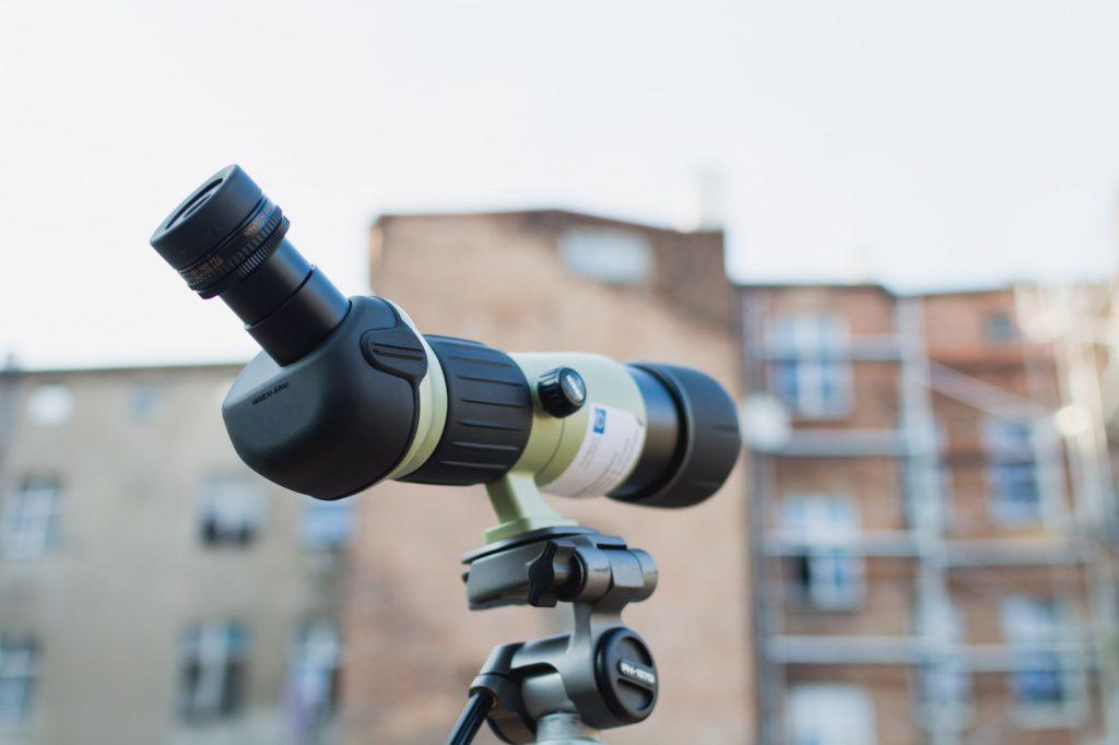 Opinia ornitologa przed termomodernizacją