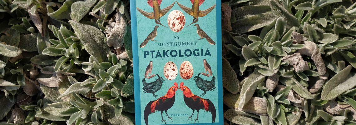 Sy Montgomery Ptakologia
