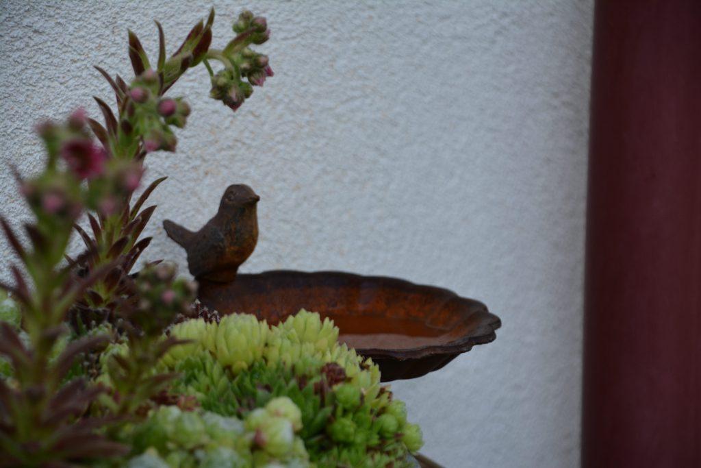 Budka dla jerzyka na balkon